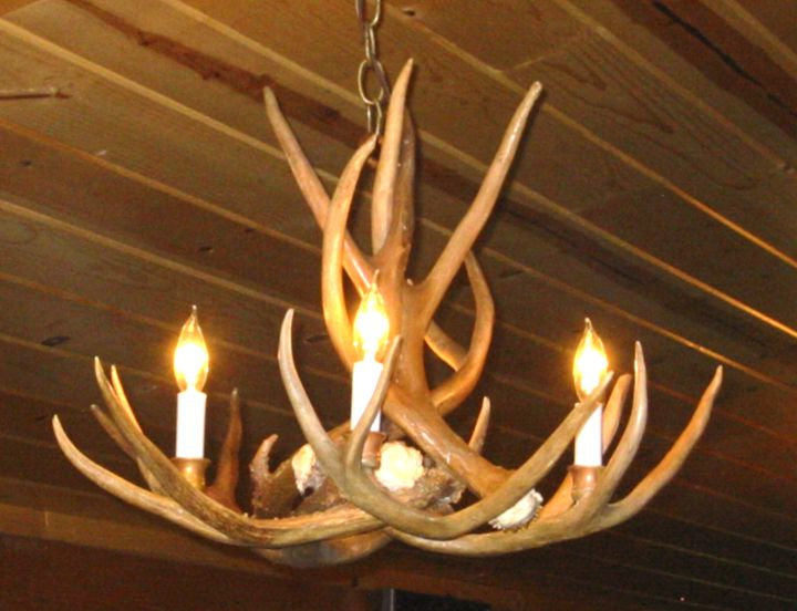 Antler Chandelier Cheap Chandeliers Design – Real Deer Antler Chandelier