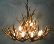 Antler chandeliers lamps and lighting made in colorado antler chandeliers aloadofball Images