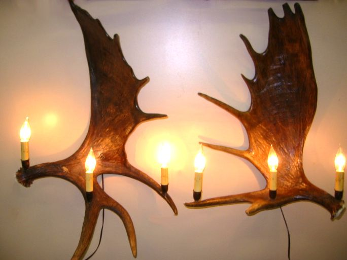 White Antler Wall Lights : Antler Wall Sconces made in Colorado of Natural Real Mule Deer, Fallow Deer, Whitetail White ...