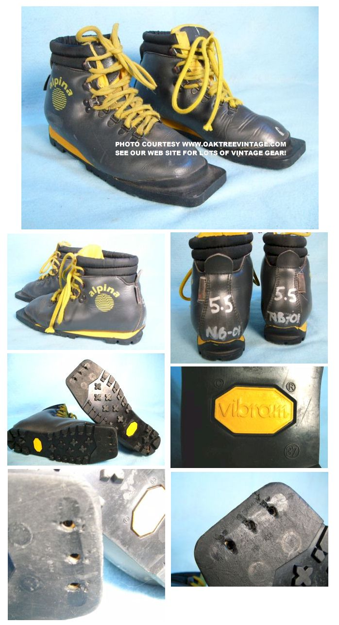 Telemark Backcountry Cross Country Skis Boots Used - Alpina cross country boots